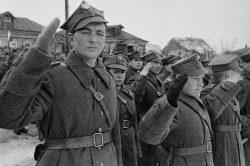Катынский расстрел: страшная правда о событиях 1940 года