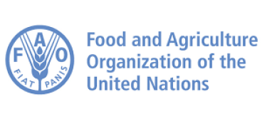 FAO United Nations Recruitment