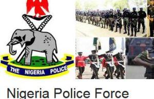 Nigerian Police Ranks And Their Salaries
