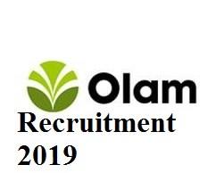 Olam Nigeria Recruitment 2019