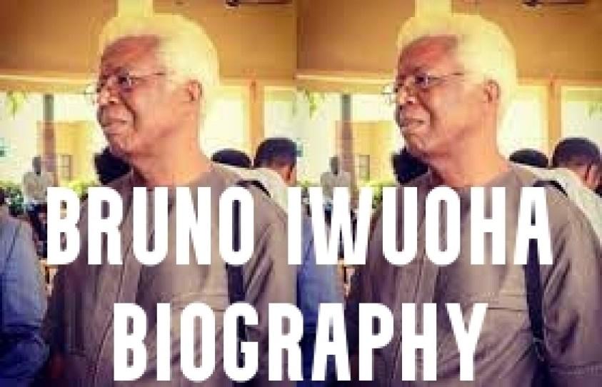 Bruno Iwuoha Biography