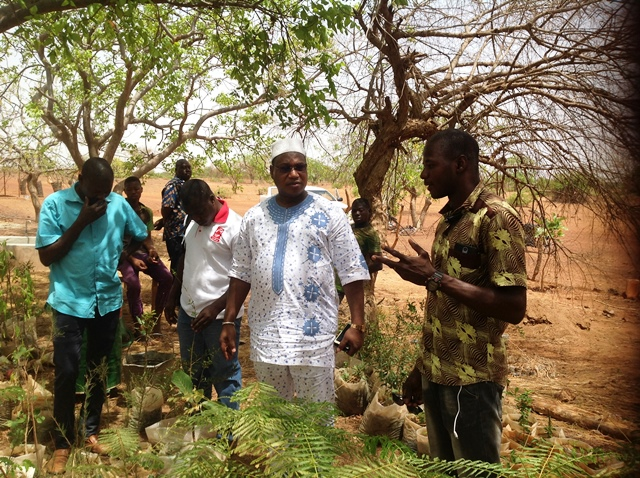 La forêt de Yacouba Savadogo menacée par le lotissement