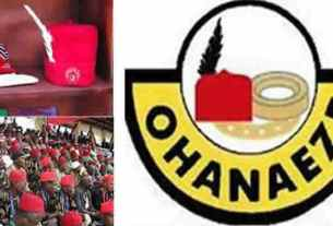 Sit-at-home: Ohanaeze declares their stand, tell IPOB what to do