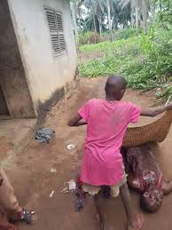 Nigerian Man Kills His Brother Over Mango In Abia State(graphic ...