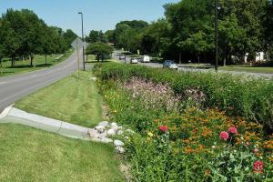 Implication of Detroit's Bioswale on its Infrastructure Asset Management Planning