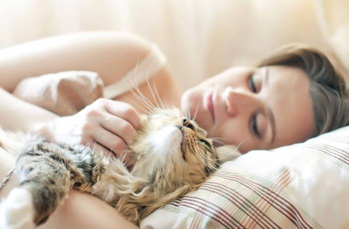 спит с кошкой