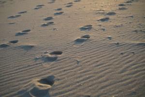 voetsporen op het strand