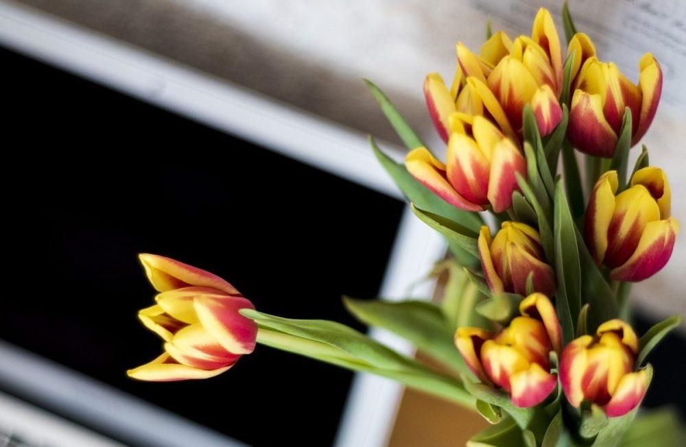 computer e fiori