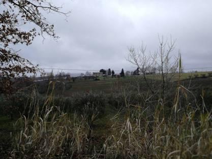 casa Rondini