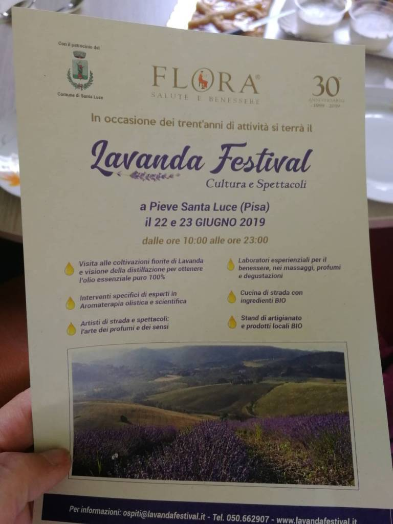 lavanda festival
