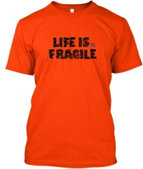 Life is Fragile - blk2
