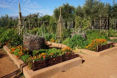 Gardens at Babylonstoren
