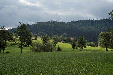 Black Forest fields and woods