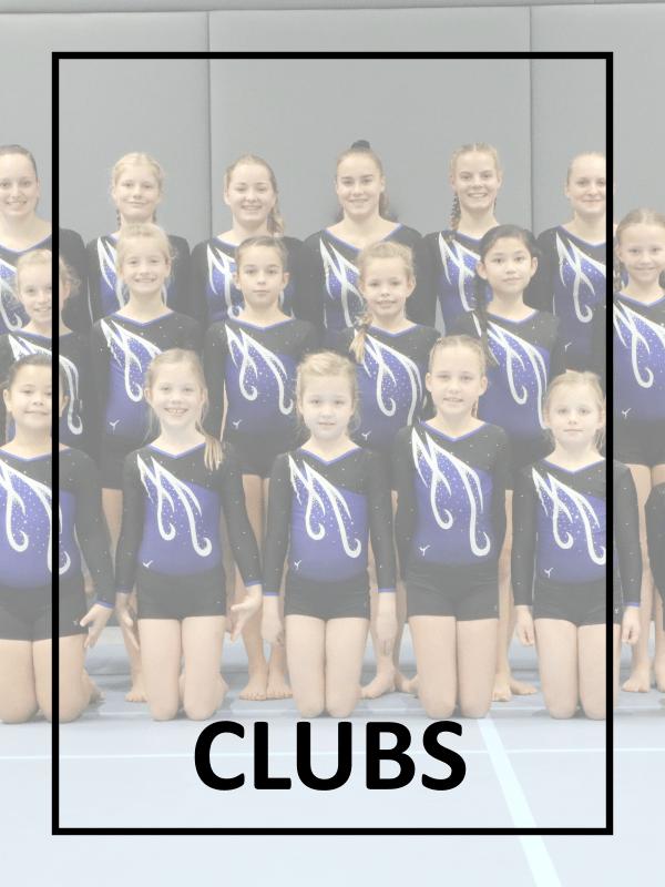 Gymnastics Club Leotard