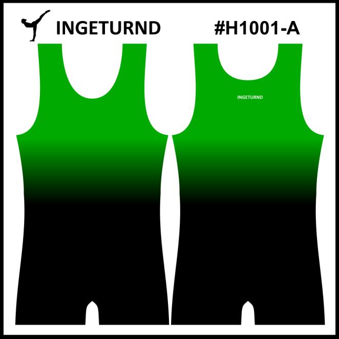 Team H1001-A