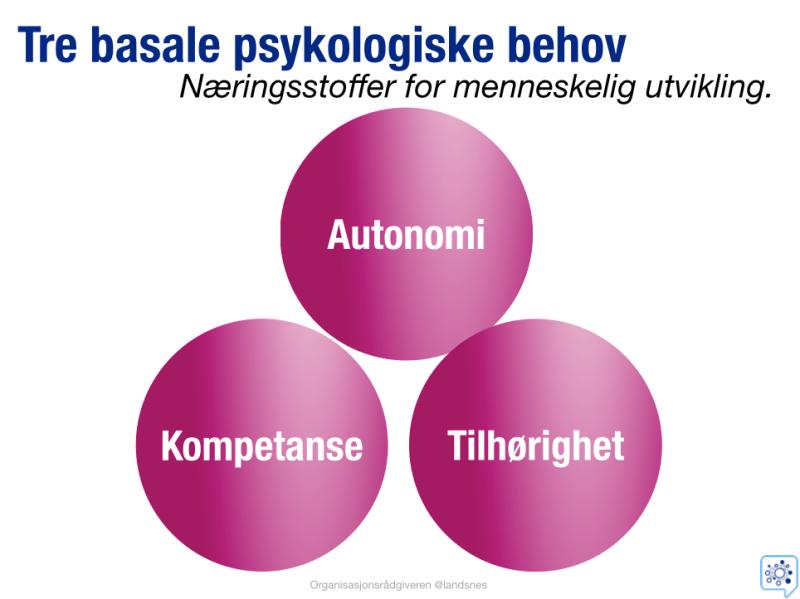 Tre basale psykologiske behov