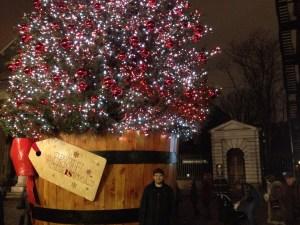 yılbaşı ağacı Covent Garden çam ağaç süslü süs süsleme ışık ışıklı Noel