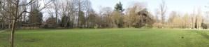 park yeşil manzara ağaç çim yeşillik çimen çimler çimenlik çimenler