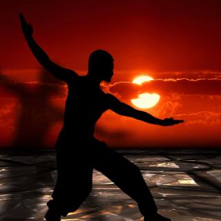 Pratica di arti marziali al tramonto