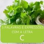 """5 Palavras e Expressões em Inglês com a Letra """"C"""""""