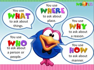 question words - wh questions