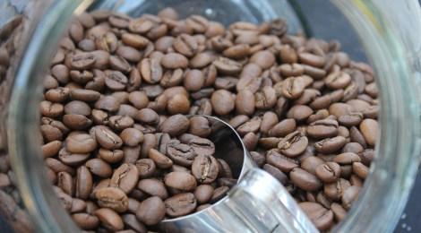 Pausa para o café   SIC 2016 começa hoje