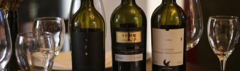 Uma taça até a Itália | Vinhos Italianos