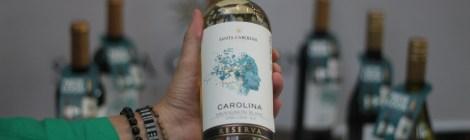 Vinhos | Reserva Carolina