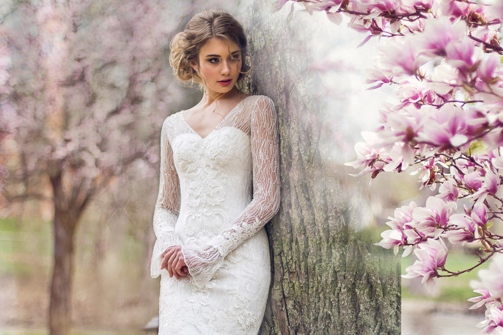 Designer Wedding Dress Collections