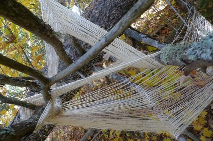 Fall Weaving