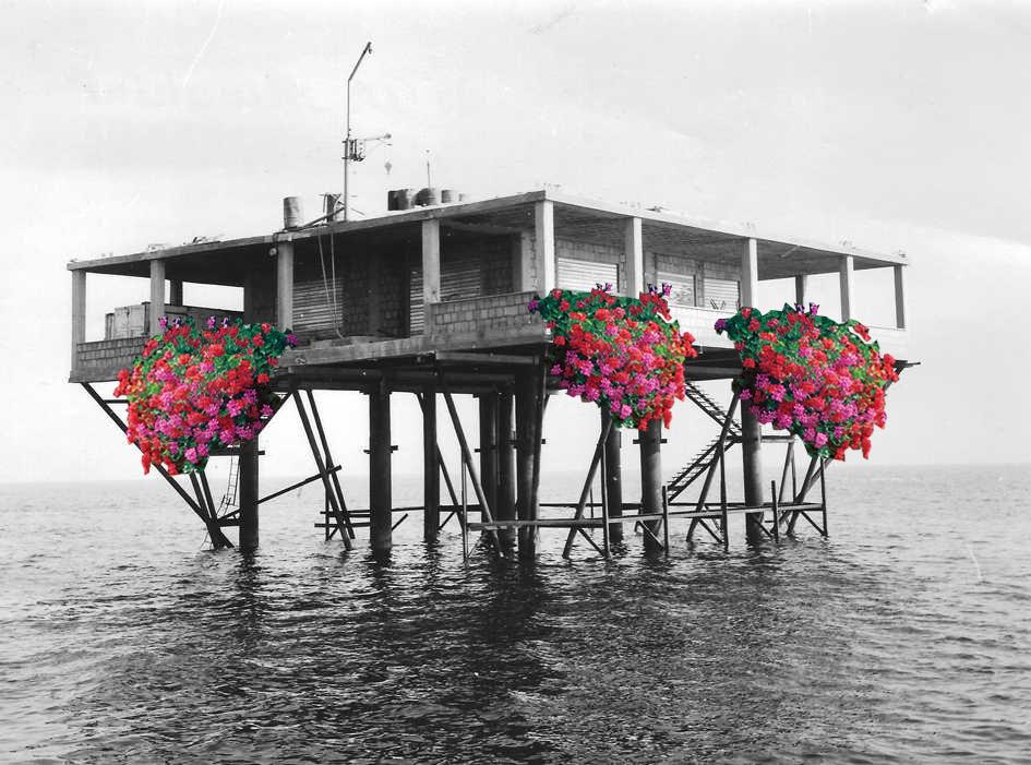 isola-delle-rose-6