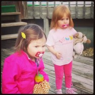 The nieces watching the dogs in the backyard