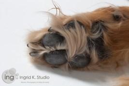 IngridK-20120315-4