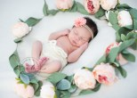 Ingrid K. Studio Newborn Portrait Session