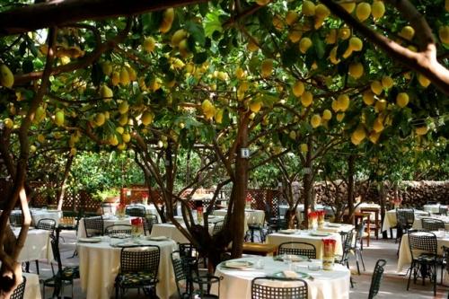 Indoor view of Paolino restaurant
