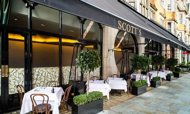 scotts-terrace-by-paul-winch-furness