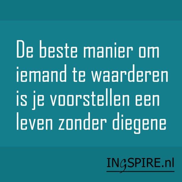 Quote: De beste manier om iemand te waarderen is je voorstellen een leven zonder diegene.