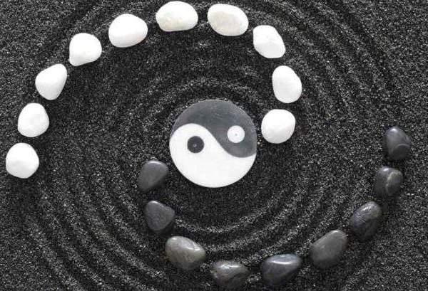 Ben jij meer Yin of Yang? Doe de Balans test op www.ingspire.nl