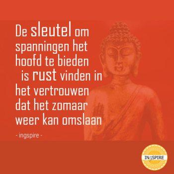 De sleutel om spanningen het hoofd te bieden - anti stress quote van ingspire.nl