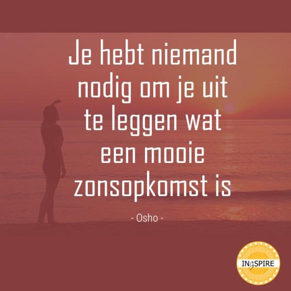Wijsheid: Je hebt niemand nodig om je uit te leggen wat een mooie zonsopkomst is - Citaat van Osho op ingspire.nl - het zingevingsplatform