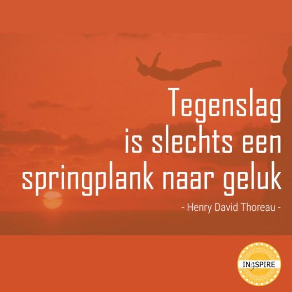 Tegenslag is slechts een springplank naar geluk - Henry David Thoreau