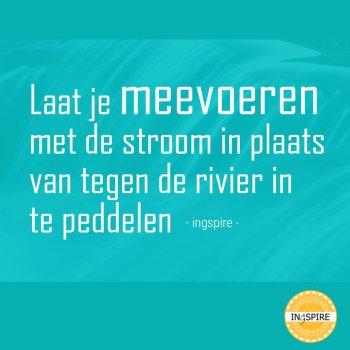 Laat je meevoeren met de stroom in plaats van tegen de rivier in te peddelen - citaat ingspire.nl