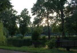 Sommerstimmung im Paradies (Foto: Julia Hauck)