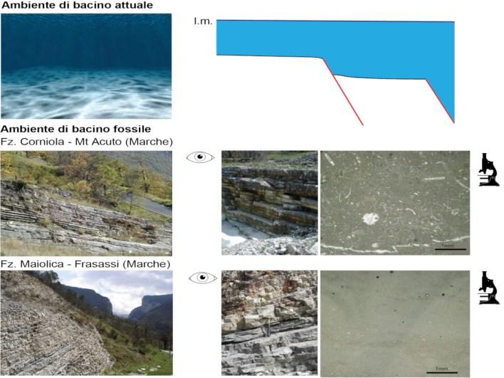 rocce al microscopio: informazioni per ricostruire la storia di una montagna