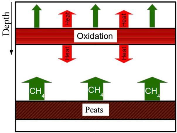 Figura 2: schema del modello concettuale che illustra la produzione e l'ossidazione del metano (CH4) le frecce verdi rappresentano il metano prodotto dai livelli di torba che risale verso la superficie, le frecce rosse indicano la dispersione del calore dal livello superficiale ricco di batteri metanotrofi (da Nespoli et al., 2015).