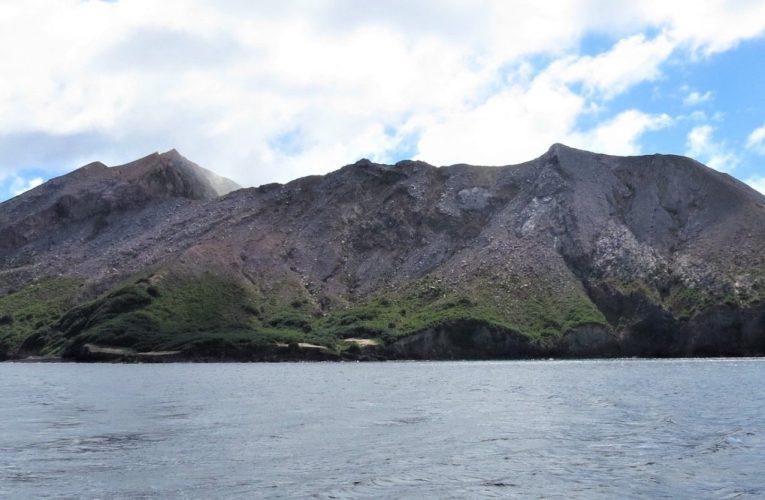 L'eruzione del vulcano Whakaari (White Island, Nuova Zelanda) del 9 dicembre 2019