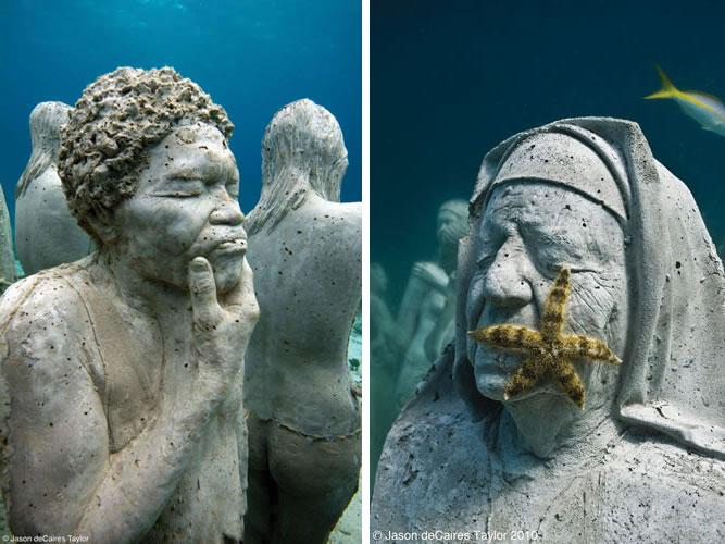 artificial coral reef