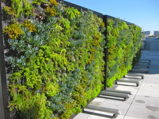 Green Living Partition « Inhabitat - Green Design ... on Green Wall Patio id=45933