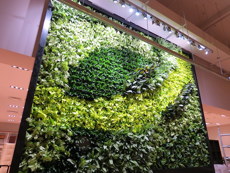 Indoor Living Wall Systems