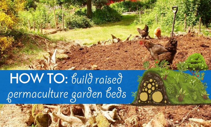 Diy Hugelkultur How To Build Raised Permaculture Garden